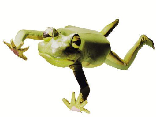 The Imago Theatre – Frogz – 4.14.19